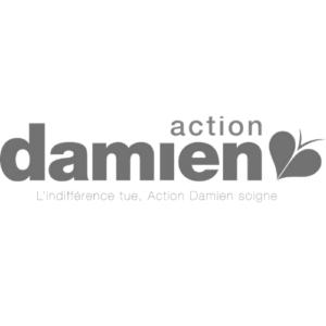 Action Damien logo gris